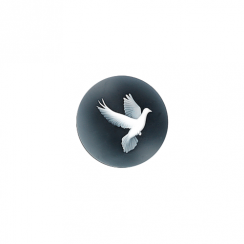 23mm Dove Cameo Disc