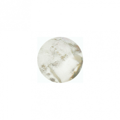 23mm Mother of Pearl Flat Disc