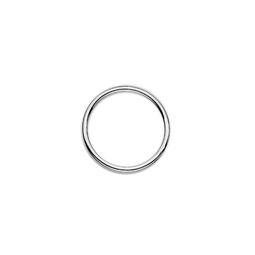 Virtue Keepsake 23mm Silver Dividing Ring Floating Charm Collection