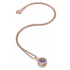 Complete Small Rose Gold and Amethyst Locket