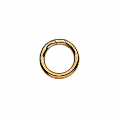 Large Gold Connecting Ring